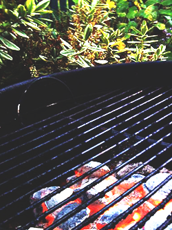 3-grill